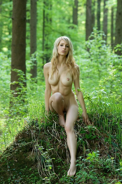эротические фотографии голых девушек в лесу